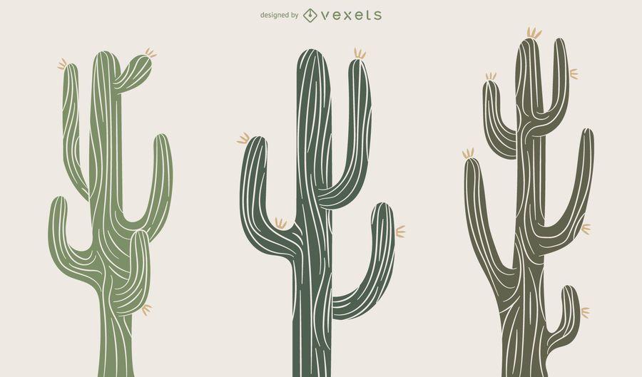 Conjunto de ilustración de planta de cactus
