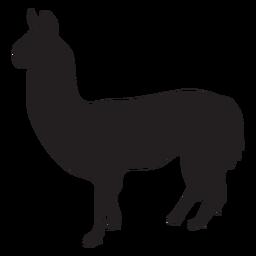 Isolated llama silhouette