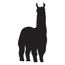 Isolated llama standing silhouette