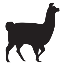 Isolated llama walking silhouette
