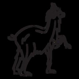 Llama animal stroke