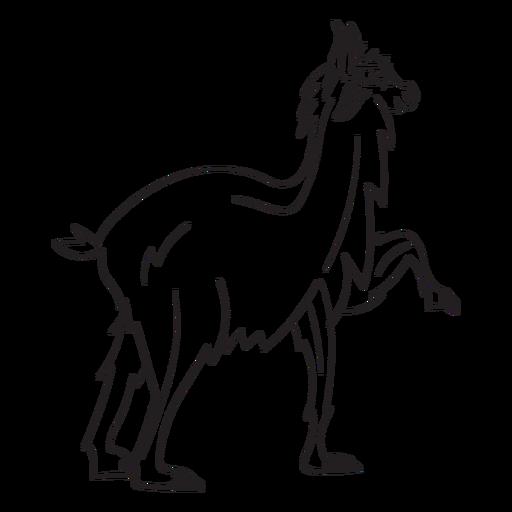 Lama-Tieranschlag Transparent PNG