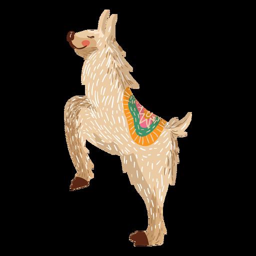Lama na ilustração de pernas traseiras Transparent PNG