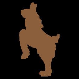 Llama on hind legs silhouette