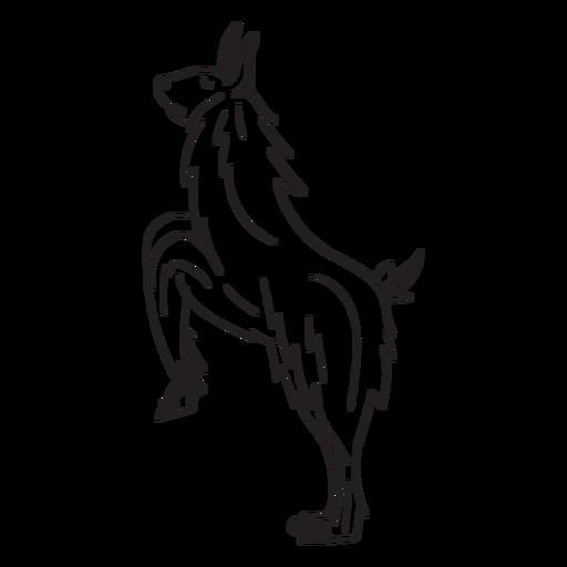 Llama on hind legs stroke Transparent PNG