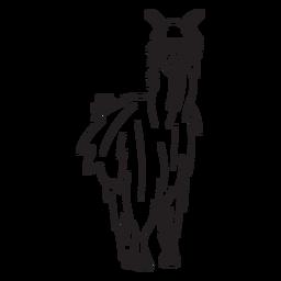 Llama standing stroke