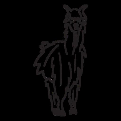 Llama em pé Transparent PNG