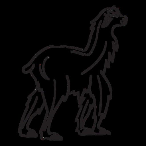 Llama walking stroke Transparent PNG