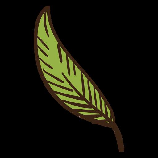 Doodle colorido de folha de planta Transparent PNG