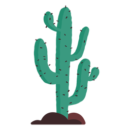 Prairie cactus illustration