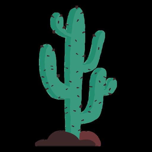 Ilustración de cactus pradera Transparent PNG
