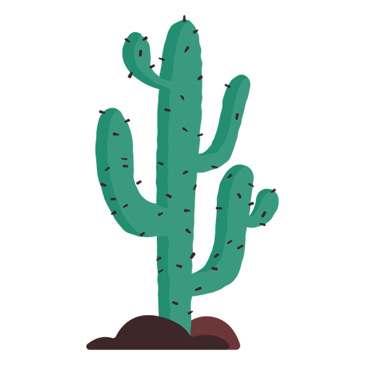 Prairie cactus illustration Transparent PNG