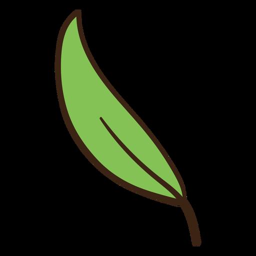 Doodle de hoja de árbol coloreado Transparent PNG
