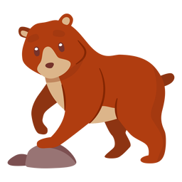 Bear animal cartoon