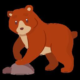 Urso animal dos desenhos animados