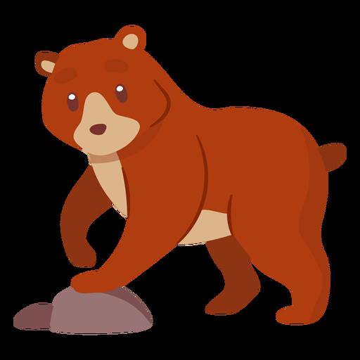 Urso animal dos desenhos animados Transparent PNG