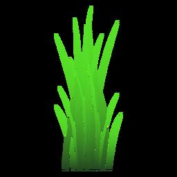 Ilustración de la hoja de hierba