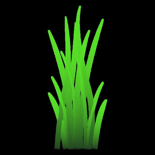 Lâmina de ilustração de grama Transparent PNG