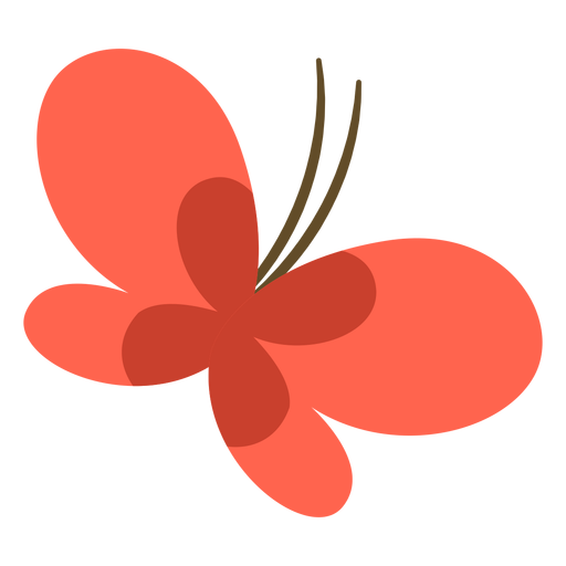 Butterfly animal cartoon