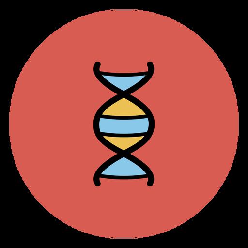 Icono de cadena de ADN Transparent PNG