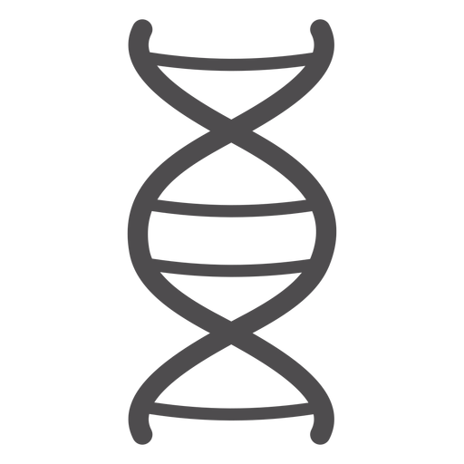 Dna chain stroke icon Transparent PNG