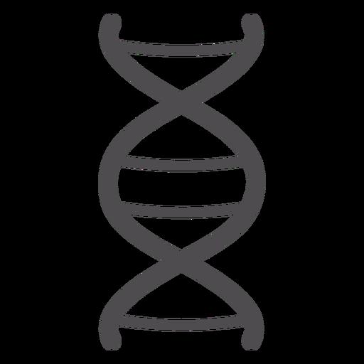 Icono de trazo de cadena de ADN Transparent PNG