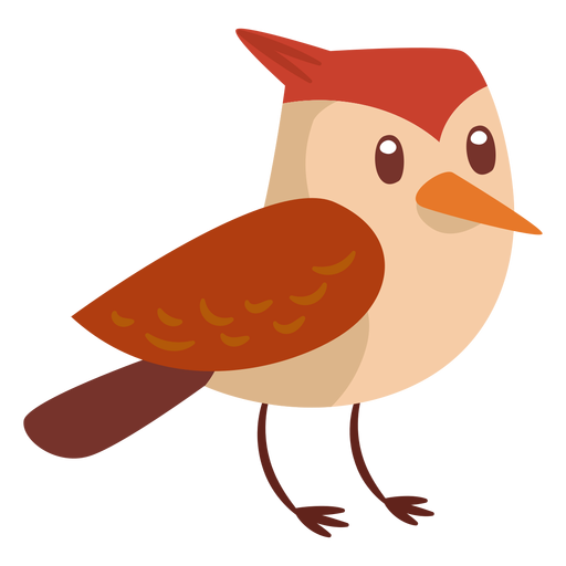 Waldvogel-Cartoon Transparent PNG