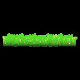 Grass lawn illustration