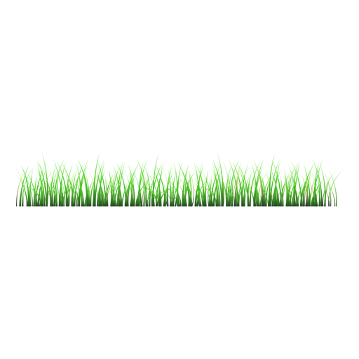 Grass lawn illustration Transparent PNG