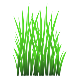 Gras verlässt Abbildung