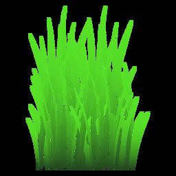 Ilustração de folhas de grama