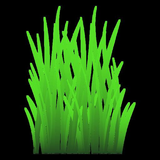 Gras verlässt Abbildung Transparent PNG