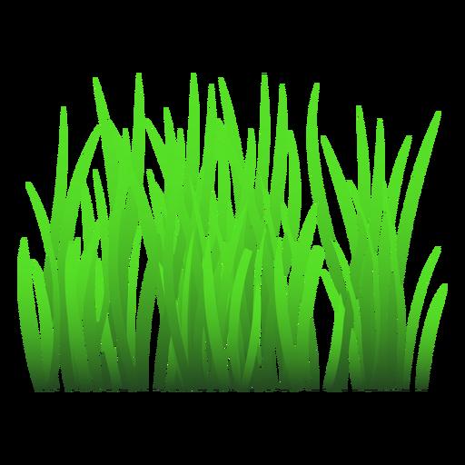 Ilustração de grama verde Transparent PNG