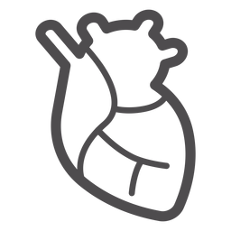 Icono de trazo de órgano de corazón