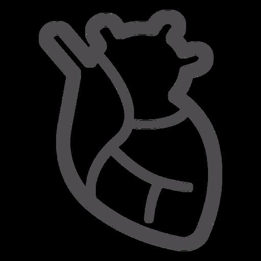 Heart organ stroke icon