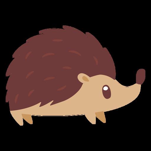 Hedgehog animal cartoon