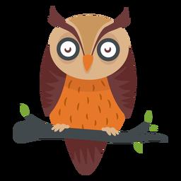 Búho de dibujos animados de aves