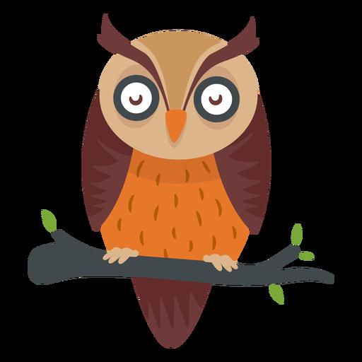 Desenho de pássaro de coruja Transparent PNG