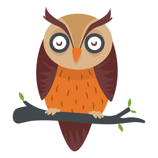 Eulen-Vogel-Cartoon Transparent PNG