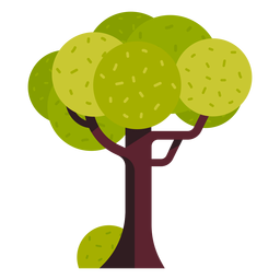 Park tree icon