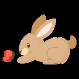 Dibujos animados de animales de conejo