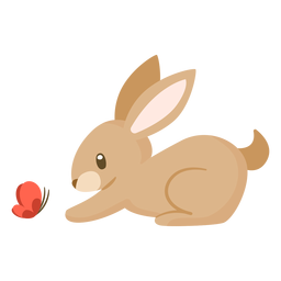 Rabbit animal cartoon