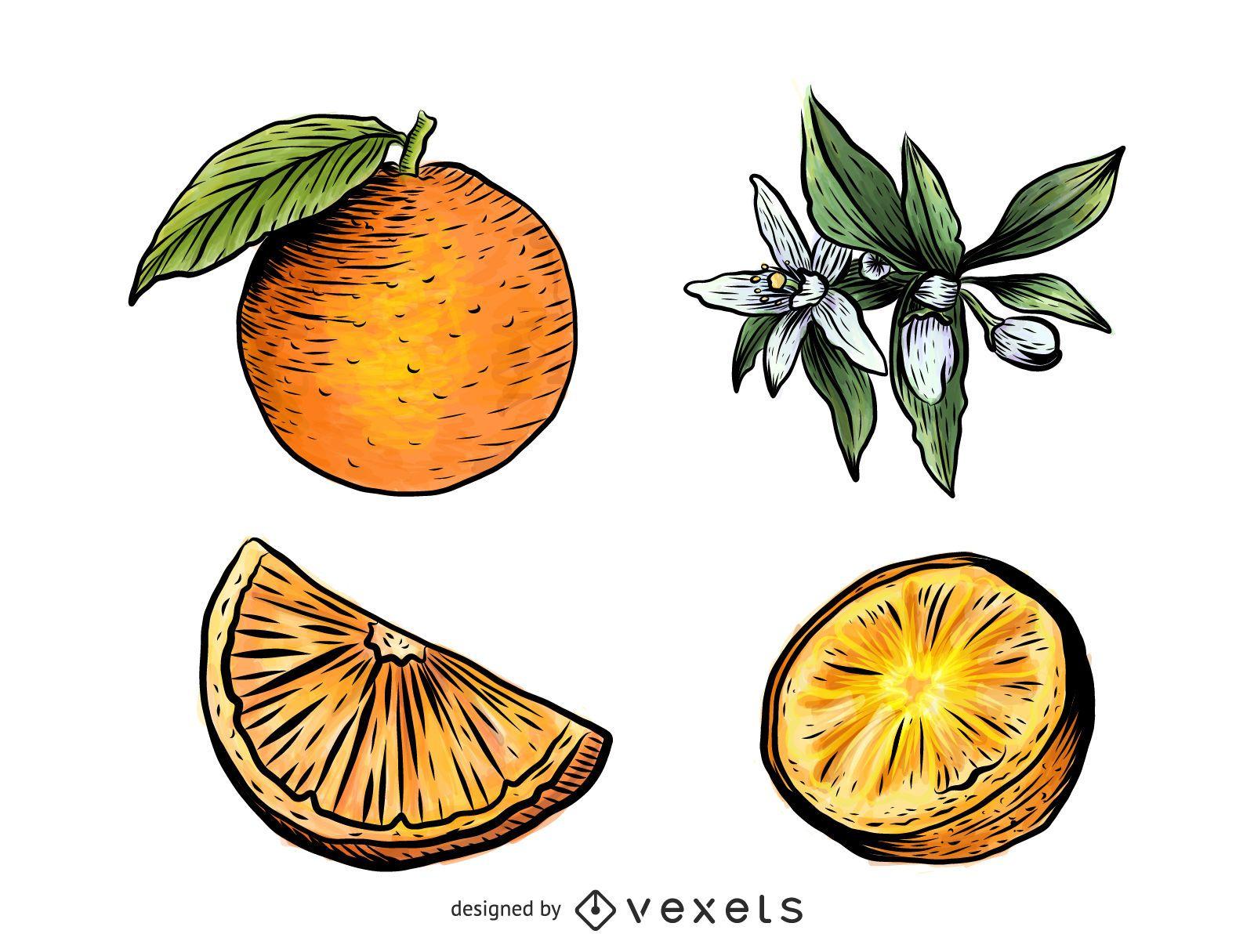 Orange elements illustration set