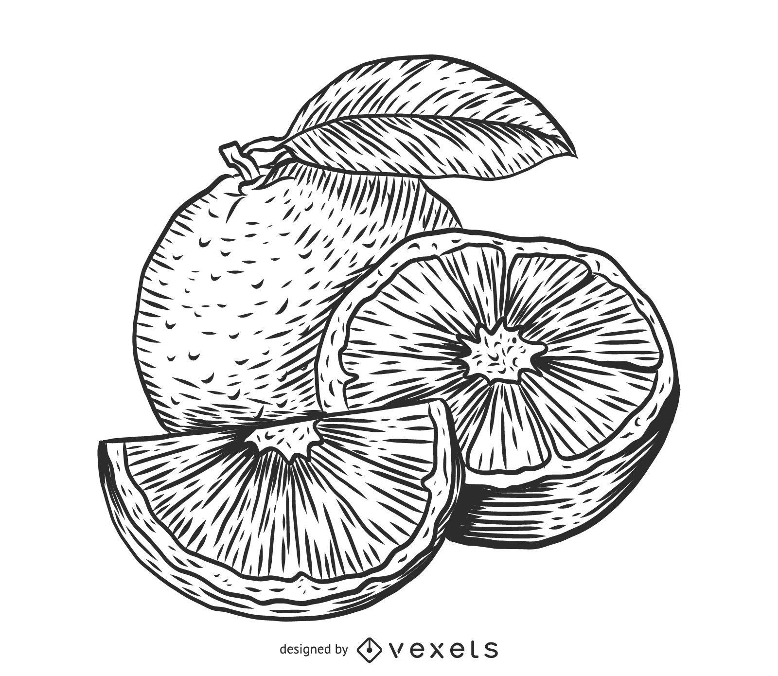 Dibujo de boceto naranja