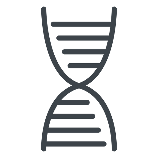 Dna chain flat school icon Transparent PNG