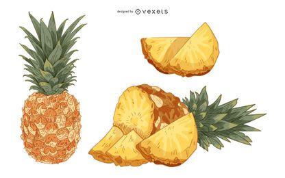 Piña Fruta Vintage Mano Dibujo Artístico Ilustración Vectorial