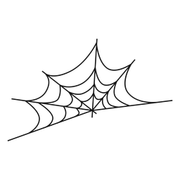 Cobweb thin line icon