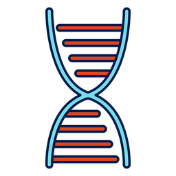 Dna chain school icon