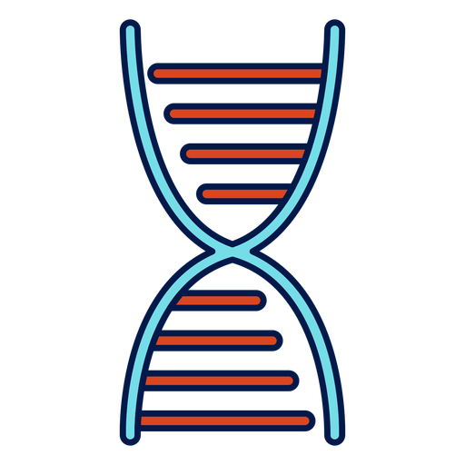 Dna chain school icon Transparent PNG