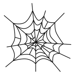 Spider web hand drawn